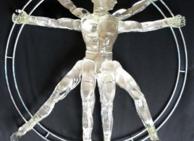 Vitruvian Man 2012  (sold)